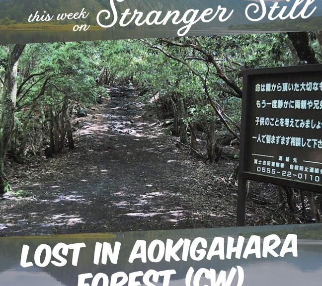 Lost in Aokigahara Forest (Content Warning) – Stranger Still